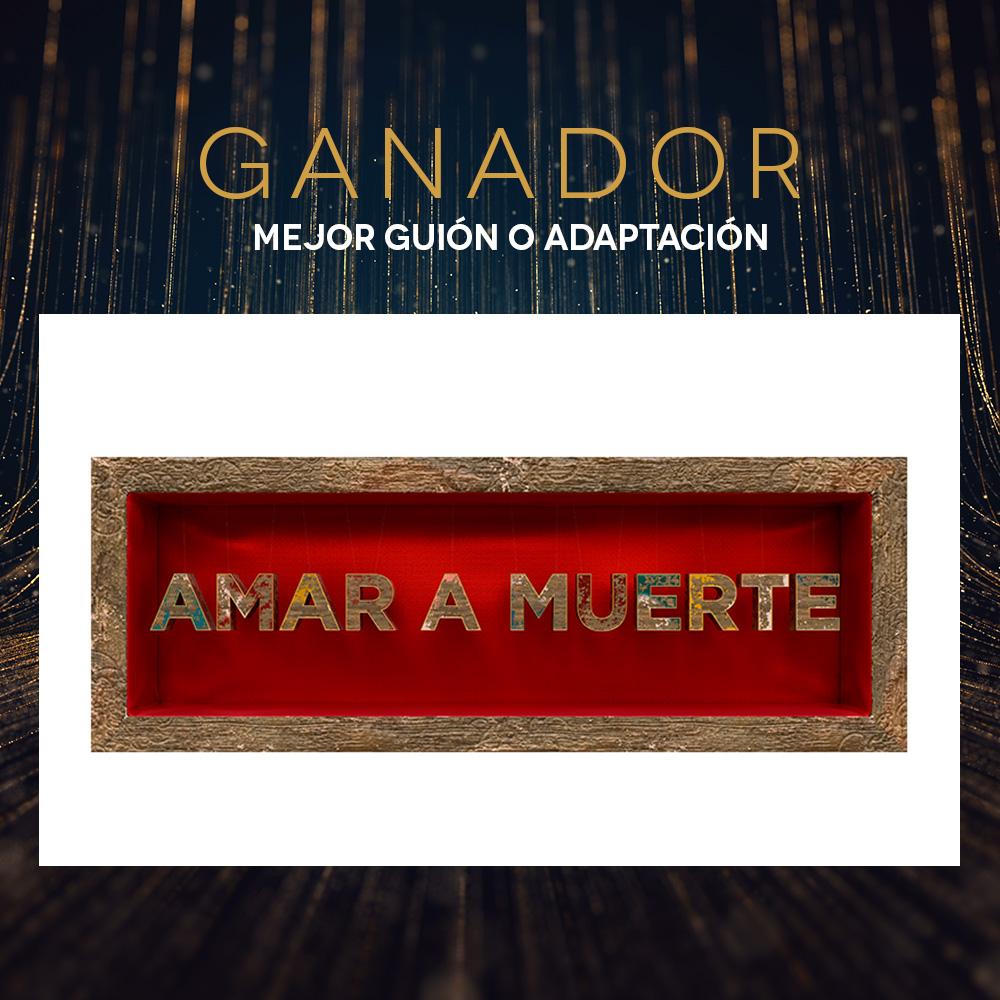 PremiosTVyN-Post-Ganador-GuionAdaptación