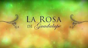 La Rosa de Guadalupe Las Estrellas Televisa Canal 2 logo