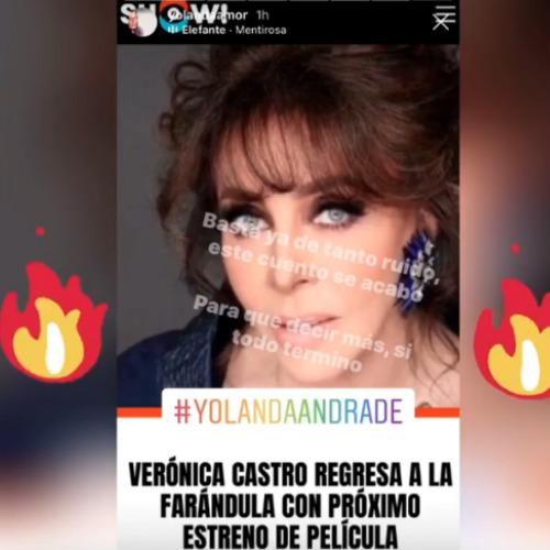 """Yolanda Andrade llama """"mentirosa"""" a Verónica Castro. Foto: Instagram"""