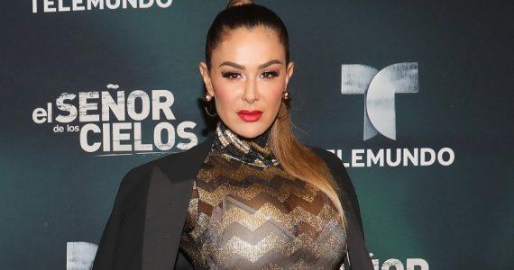 ¿Ninel Conde insinúa que su ex es gay? Foto: Getty Images