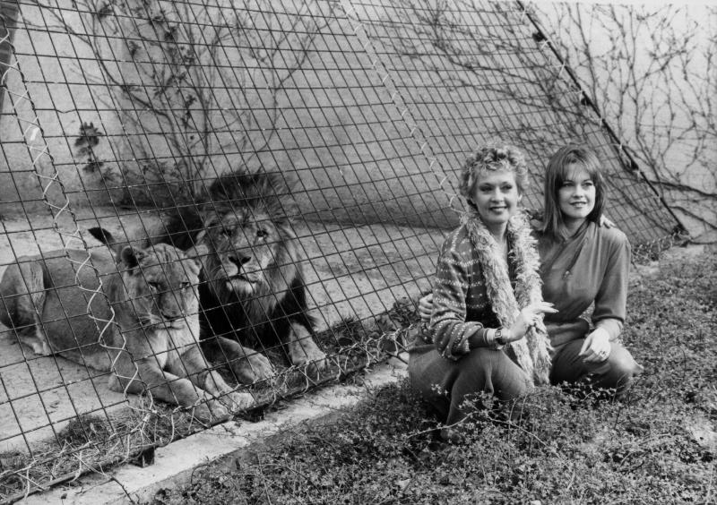 Animales exóticos que conquistaron a los famosos