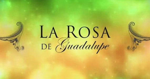 Las 10 mejores peleas De la Rosa de Guadalupe (VIDEO)